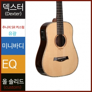 덱스터 통기타 Junior SR CUSTOMDexter